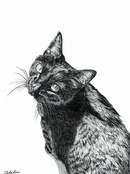 猫の作品2